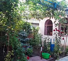 Суклея Центр дом котельцовый, гараж, сауна, летняя кухня, сарай.