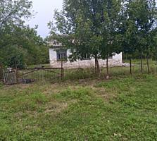 Продам земельно-садовый участок с домом рядом с Бельцами или обмен