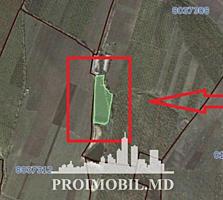 Se oferă spre vînzare teren cu obiect acvatic, situat în raionul ...