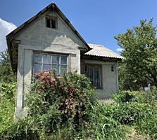 Дача Унгенский район (садовые участки) Валя Маре