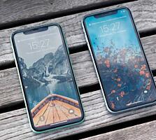 КУПЛЮ iPhone XR/11 (по срочной цене)