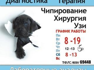 Ветеринарная клиника-аптека-зоомагазин