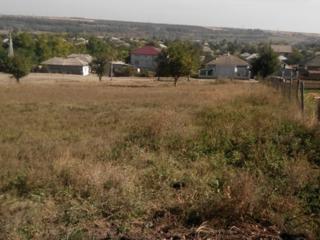 Teren pentru constructii r-ul Riscani, sat. Corlateni