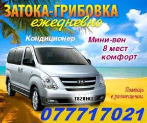 Затока - Грибовка - Ильичевск ежедневный отдых