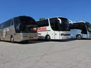 Compania licenţiată în servicii de transport
