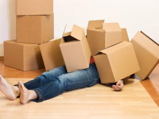 Vind cutii din carton! Продам картонные коробки!