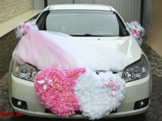 Сдам напрокат свадебные украшения на авто. Низкие цены!