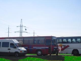Автобусы 20-30-40-50-58 мест для торжеств и экскурсий...