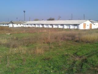 Продается здание бывшей птицефермы