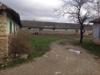 Територия бывшая бригада Пеления в центре села напротив школы