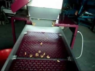 Предлагаем от производителя оборудование для очистки и обжарки ореха.