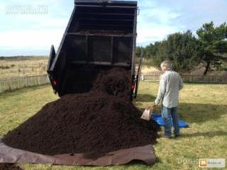 Бельцы Доставка чернозема вывоз мусора снос домов Очистка территорий!!