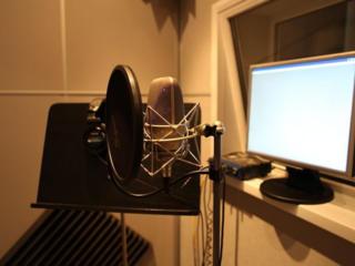 Студийная запись, обработка вокала и т. д