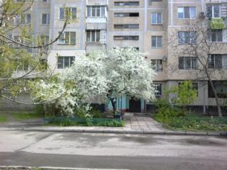 Обменяю 2-комн. квартиру в центре Таирова правильной планировки