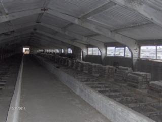 Vind ferma zootehnica Moldova