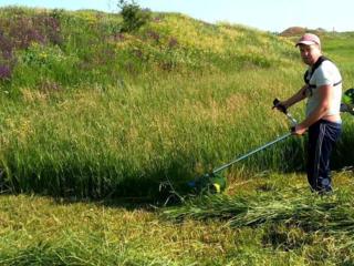Косим траву, любой вид травы и твердой породы. +Выкорчевываем деревья