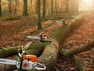 Распил и колка дров в городе и пригороде. Выезд на дом.
