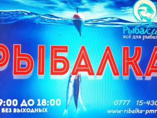 Рыбацкий магазин МОТЫЛЬ, МОТЫЛЬ