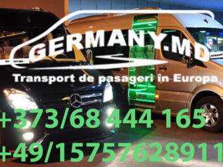 Transport Italia - Padova, Verona, Milano, Bologna etc.