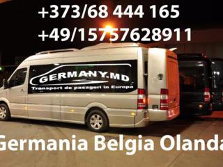 Germania, Olanda, Belgia, Austria, Cehia etc.