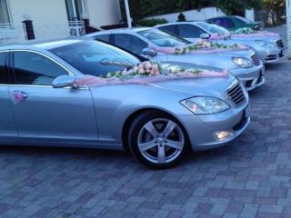 Заказ свадебного кортежа в Бельцах и близлеж. районах