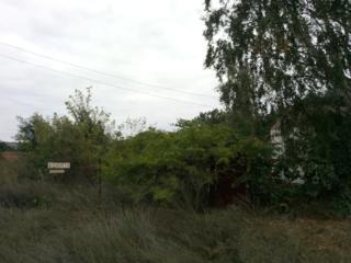 Земельный участок село Андреевка (оно же село Арделево) Ясная Поляна