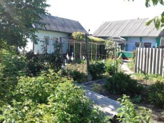 Меняю дом в селе Цынцарены на одну комнату в Кишиневе