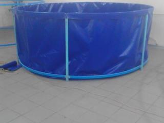 Каркасные бассейны из тентовой ткани для выращивания рыбы, купания