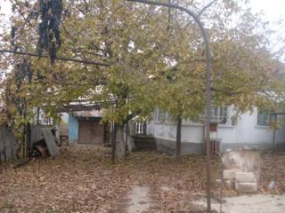 Se vinde casa in Razeni