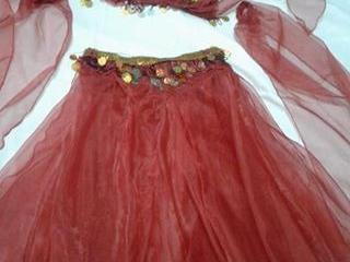 Costum dansuri orientale. Костюм для восточных танцев