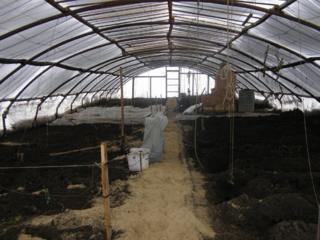 Биогумус (подкормка натуральная) для ваших растений