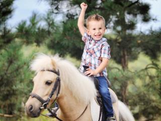 В конноспортивном клубе «Спарта» верховая езда доступна каждому!