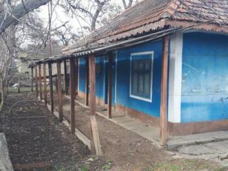 Продается дом на ст. Катраник