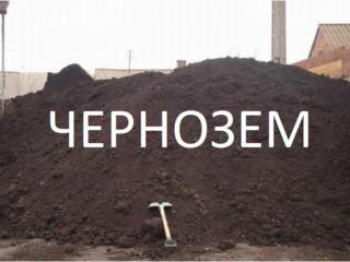 Бельцы доставка чернозема! Вывоз мусора! Очистка участков! Снос домов!