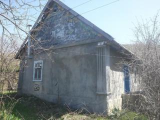 Продам дом в с. Буторы или на разборку (бут, шифер)