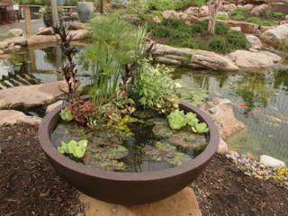 Проектировка и строительство, оформление прудов и уличных водоемов