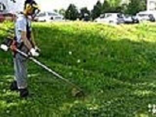 Покос травы на вашем участке. распиливание дров на вашем участке