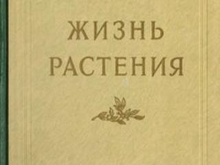 Старые книги. Антикварные книги