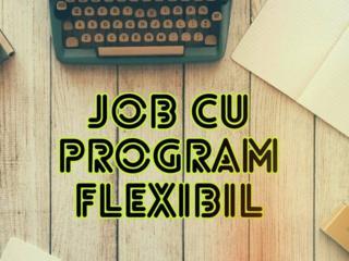 Job cu program flexibil