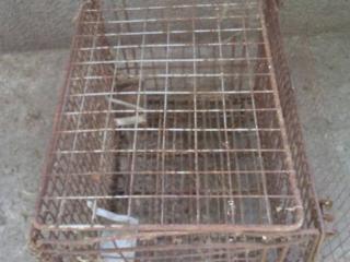Продам клетки для кроликов