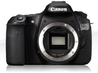 Canon 60D + Canon 55-250 IS