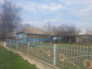 дом в селе Бутучаны