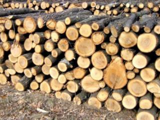 Скидки на дрова! Успей купить!