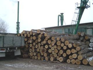 Продаем действующее деревообрабатывающее предприятие площадью 2500 м2