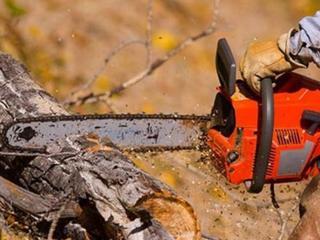 Распил и колка дров, шпал деревьев.