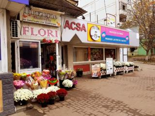 Chirie/Сдаю торговую площадь Chisinau (Скулянка)