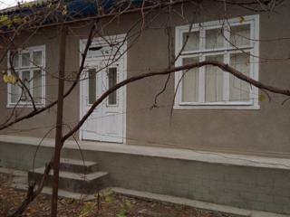 Vind casa in Elizaveta