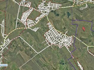 60 hectare comasate 100% in Colonita cu livada de mere - 8 km