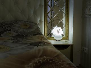 1 комн. Люкс. Ботаника. Apartament Lux(WiFi). Ночь(noapte)-500лей.