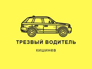 Трезвый водитель Șofer Treaz